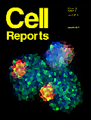 Organ-Specific Fate, Recruitment, and Refilling Dynamics of Tissue-Resident Macrophages during Blood-Stage Malaria.